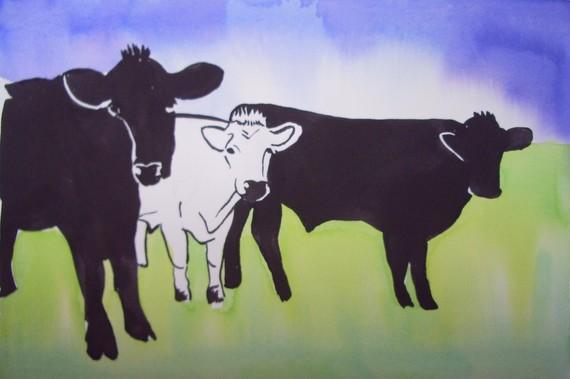 Cows WEB